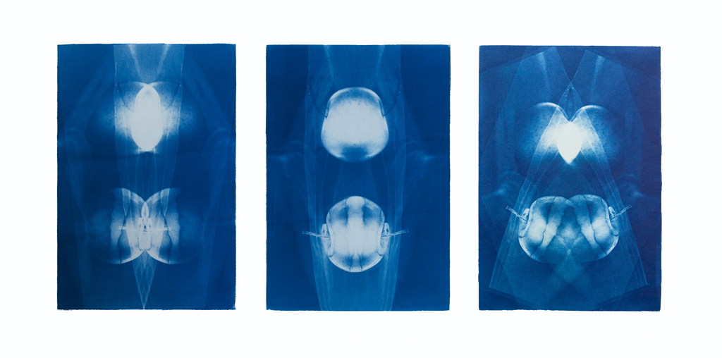 Deep sea secrets, triptych, 3 x 35/50 cm